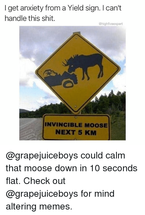 Memes, Shit, and Anxiety: I get anxiety from a Yield sign. I can't  handle this shit.  @highfiveexpert  INVINCIBLE MOOSE  NEXT 5 KM @grapejuiceboys could calm that moose down in 10 seconds flat. Check out @grapejuiceboys for mind altering memes.