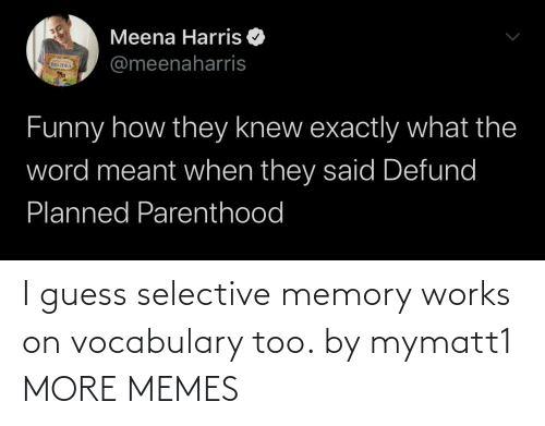 memory: I guess selective memory works on vocabulary too. by mymatt1 MORE MEMES