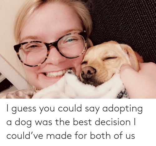 I Guess You Could Say: I guess you could say adopting a dog was the best decision I could've made for both of us