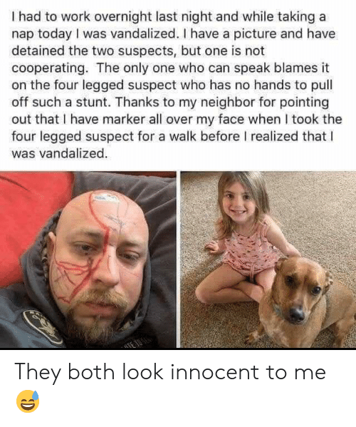 Work, Today, and My Face When: I had to work overnight last night and while taking a  nap today I was vandalized. I have a picture and have  detained the two suspects, but one is not  cooperating. The only one who can speak blames it  on the four legged suspect who has no hands to pull  off such a stunt. Thanks to my neighbor for pointing  out that I have marker all over my face when I took the  four legged suspect for a walk before I realized that l  was vandalized They both look innocent to me 😅
