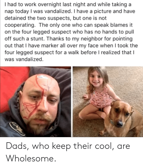 Wholesome: I had to work overnight last night and while taking a  nap today I was vandalized. I have a picture and have  detained the two suspects, but one is not  cooperating. The only one who can speak blames it  on the four legged suspect who has no hands to pull  off such a stunt. Thanks to my neighbor for pointing  out that I have marker all over my face when I took the  four legged suspect for a walk before I realized that I  was vandalized.  TE Dads, who keep their cool, are Wholesome.