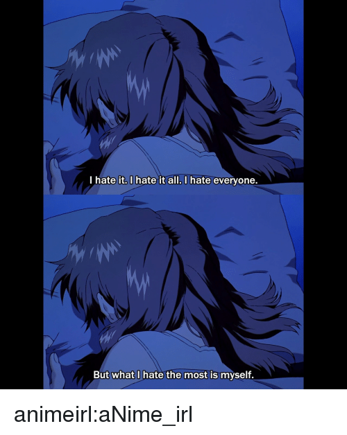 i hate everyone: I hate it, I hate it all. I hate everyone.  But what I hate the most is myself. animeirl:aNime_irl
