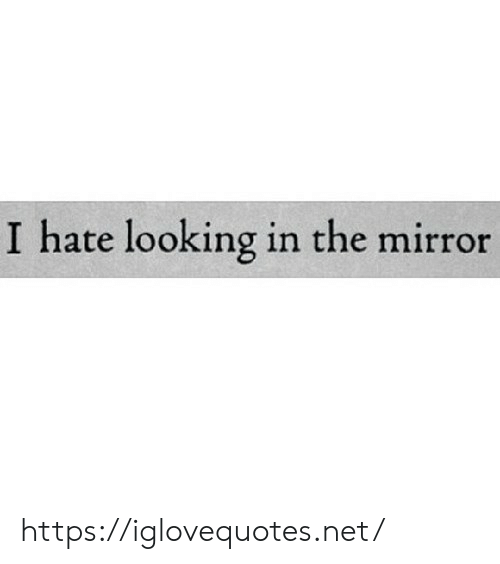 Mirror, Net, and Looking: I hate looking in the mirror https://iglovequotes.net/