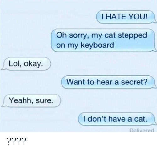 i hate you: I HATE YOU!  Oh sorry, my cat stepped  on my keyboard  Lol, okay.  Want to hear a secret?  Yeahh, sure.  I don't have a cat. ????