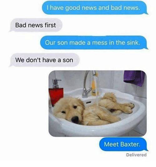Bad, Memes, and News: I have good news and bad news.  Bad news first  Our son made a mess in the sink.  We don't have a son  Meet Baxter  Delivered