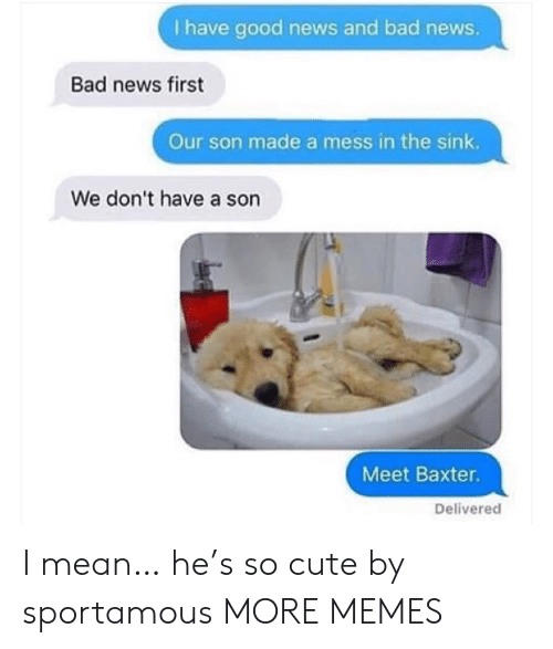 Dont Have A: I have good news and bad news.  Bad news first  Our son made a mess in the sink.  We don't have a son  Meet Baxter.  Delivered I mean… he's so cute by sportamous MORE MEMES
