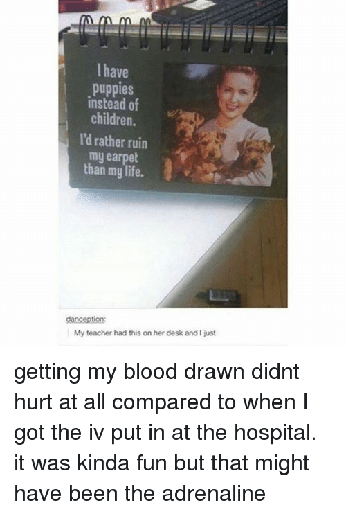 Hurtfully: I have  puppies  instead of  children.  I'd rather ruin  my carpet  than my life.  My teacher had this on her desk and I just getting my blood drawn didnt hurt at all compared to when I got the iv put in at the hospital. it was kinda fun but that might have been the adrenaline