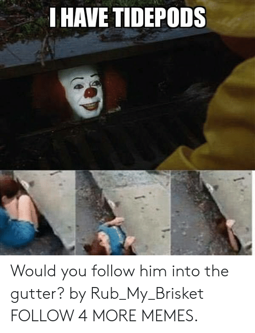 Rub My: I HAVE TIDEPODS Would you follow him into the gutter? by Rub_My_Brisket FOLLOW 4 MORE MEMES.