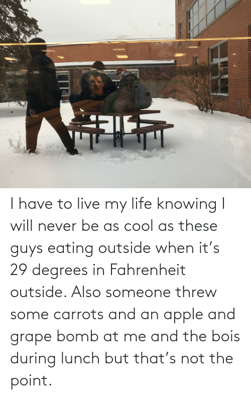 knowing: I have to live my life knowing I will never be as cool as these guys eating outside when it's 29 degrees in Fahrenheit outside. Also someone threw some carrots and an apple and grape bomb at me and the bois during lunch but that's not the point.