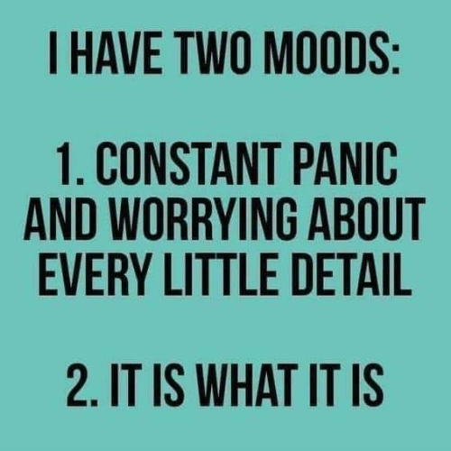 it is what it is: I HAVE TWO MOODS  1. CONSTANT PANIC  AND WORRYING ABOUT  EVERY LITTLE DETAIL  2. IT IS WHAT IT IS