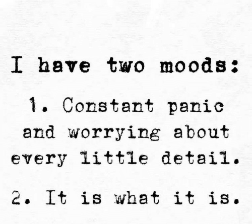 What, Worrying, and Constant: I have two moods:  . Constant panic  and worrying about  every little detail.  2. It is what it is.