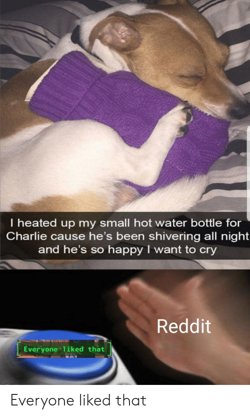 Charlie: I heated up my small hot water bottle for  Charlie cause he's been shivering all night  and he's so happy I want to cry  Reddit  Everyone 1iked that Everyone liked that