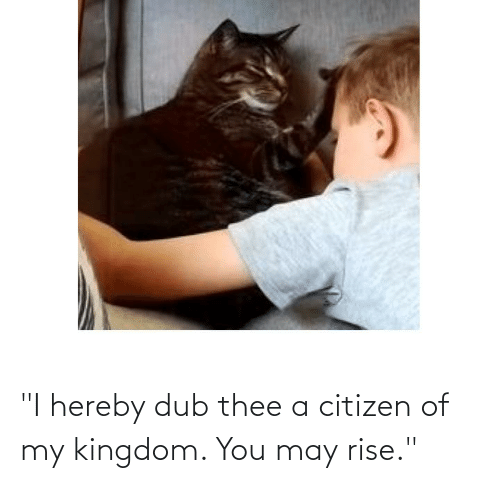 """kingdom: """"I hereby dub thee a citizen of my kingdom. You may rise."""""""