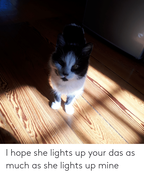 lights: I hope she lights up your das as much as she lights up mine