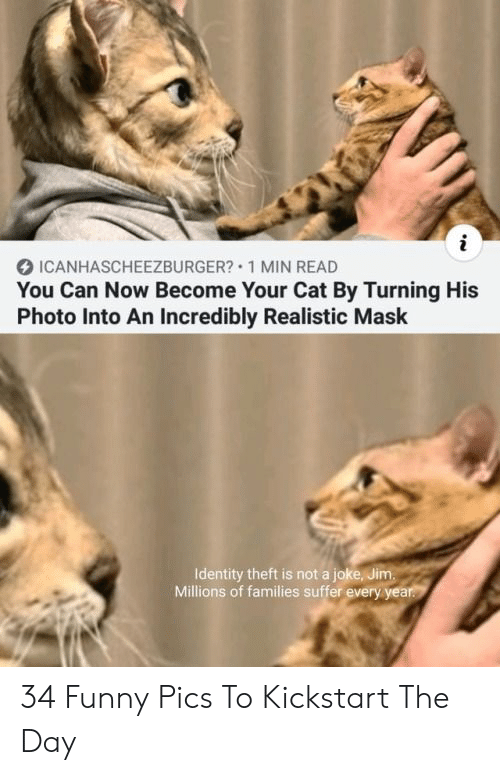 identity: i  ICANHASCHEEZBURGER? 1 MIN READ  You Can Now Become Your Cat By Turning His  Photo Into An Incredibly Realistic Mask  Identity theft is not a joke, Jim.  Millions of families suffer every year. 34 Funny Pics To Kickstart The Day