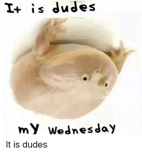 Reddit, Wednesday, and Dudes: I+ is dudes  my Wednesday
