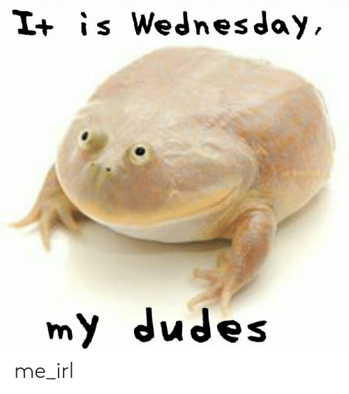 Wednesday, Irl, and Me IRL: I+ is Wednesday  my dudes me_irl