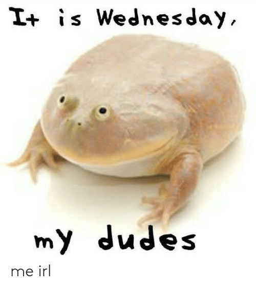 Wednesday, Irl, and Me IRL: I+ is Wednesday  my dudes me irl