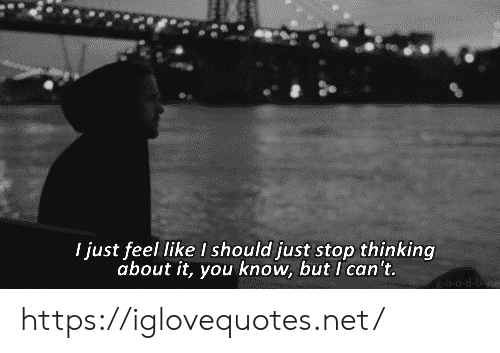 Net, You, and D&b: I just feel like I should just stop thinking  about it, you know, but I can't.  -0-d-B https://iglovequotes.net/