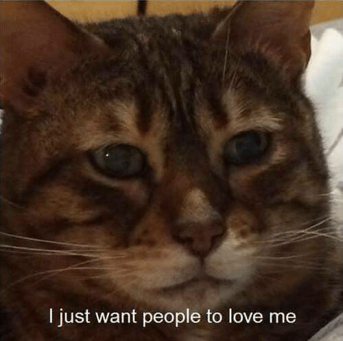 Love, People, and Just: I just want people to love me