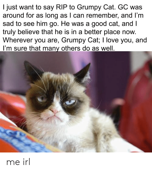 Love, Grumpy Cat, and I Love You: I just want to say RIP to Grumpy Cat. GC was  around for as long as I can remember, and I'm  sad to see him go. He was a good cat, and I  truly believe that he is in a better place now  Wherever you are, Grumpy Cat; I love you, and  I'm sure that many others do as well me irl