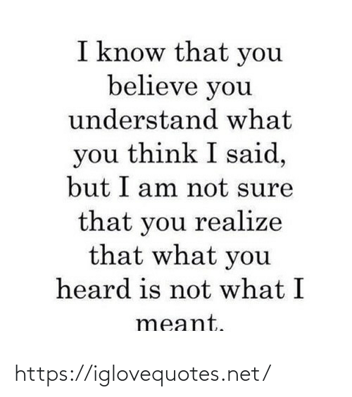Think I: I know that you  believe you  understand what  you think I said,  but I am not sure  that you realize  that what you  heard is not what I  meant. https://iglovequotes.net/