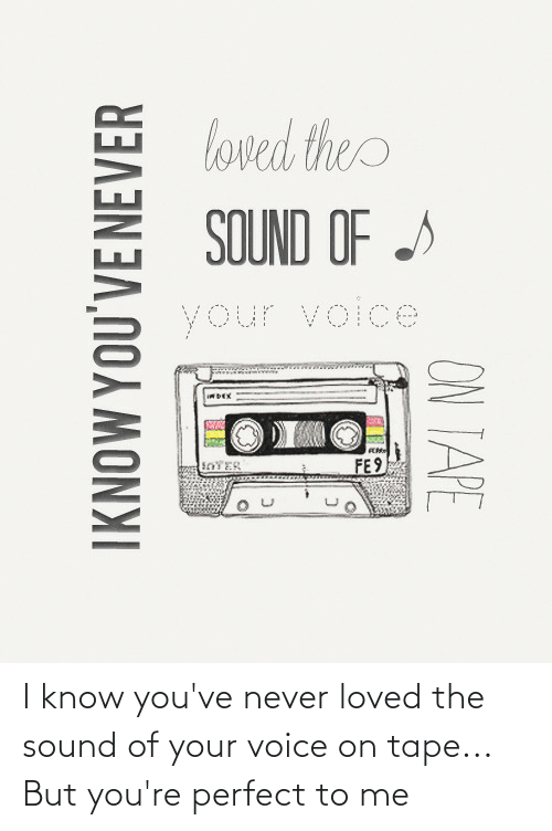 Never Loved:  I know you've never loved the sound of your voice on tape... But you're perfect to me