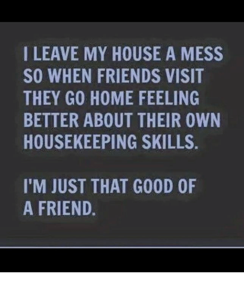 Dank, Friends, and My House: I LEAVE MY HOUSE A MESS  SO WHEN FRIENDS VISIT  THEY GO HOME FEELING  BETTER ABOUT THEIR OWN  HOUSEKEEPING SKILLS  I'M JUST THAT GOOD OF  A FRIEND.