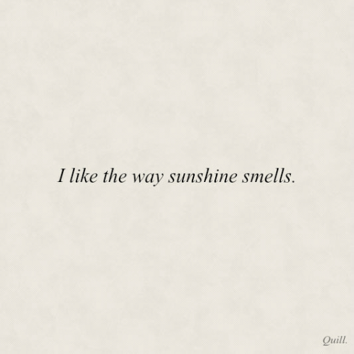 Quill: I like the way sunshine smells.  Quill