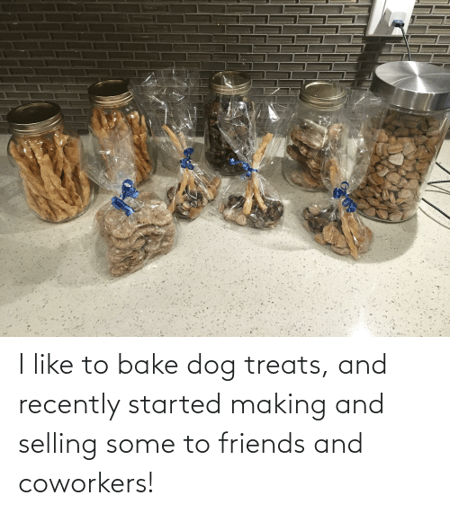 Friends, Coworkers, and Dog: I like to bake dog treats, and recently started making and selling some to friends and coworkers!