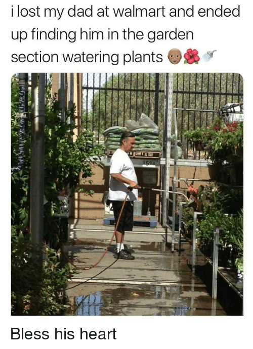 Bless His Heart: i lost my dad at walmart and ended  up finding him in the garden  section watering plants Bless his heart