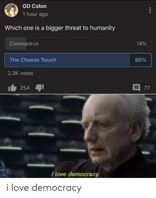 Love Democracy: i love democracy