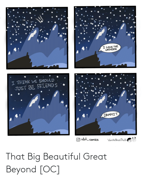 universe: I LOVE THE  UNIVERSE  I THINK WL SHOULD  JUST BE FRIENDS  DAMMIT.  O: vbt- comics  Vanilla BeanThots That Big Beautiful Great Beyond [OC]