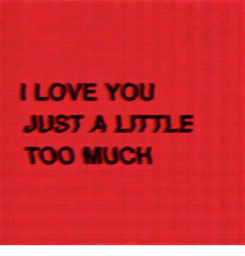 Love, Too Much, and I Love You: I LOVE YOU  JUST A LITTLE  TOO MUCH