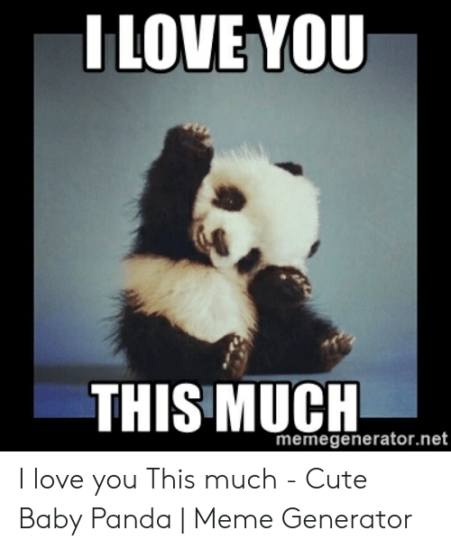 Cute, Love, and Meme: I LOVE YOU  THIS MUCH  memegenerator.net I love you This much - Cute Baby Panda   Meme Generator