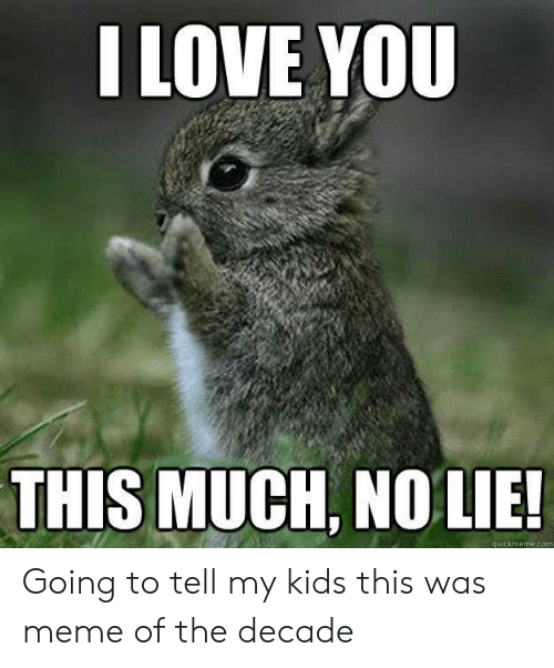 i love you this much: I LOVE YOU  THIS MUCH, NO LIE!  quickmeme.com Going to tell my kids this was meme of the decade