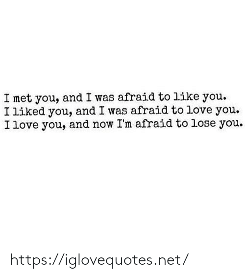 Love, I Love You, and Net: I met you, and I was afraid to like you.  I liked you, and I was afraid to love you.  I love you, and now I'm afraid to lose you. https://iglovequotes.net/