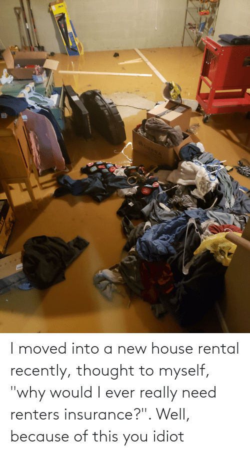 """insurance: I moved into a new house rental recently, thought to myself, """"why would I ever really need renters insurance?"""". Well, because of this you idiot"""