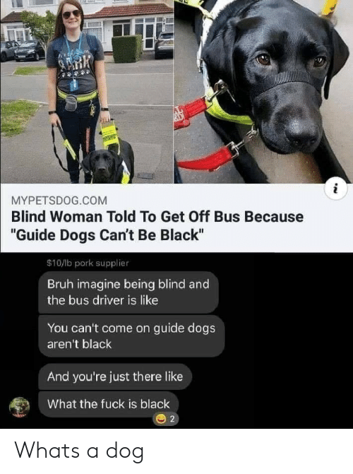 "Bruh, Dogs, and Black: i  MYPETSDOG.COM  Blind Woman Told To Get Off Bus Because  ""Guide Dogs Can't Be Black""  $10/lb pork supplier  Bruh imagine being blind and  the bus driver is like  You can't come on guide dogs  aren't black  And you're just there like  What the fuck is black Whats a dog"