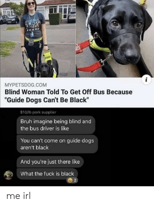 "Bruh, Dogs, and Black: i  MYPETSDOG.COM  Blind Woman Told To Get Off Bus Because  ""Guide Dogs Can't Be Black""  $10/lb pork supplier  Bruh imagine being blind and  the bus driver is like  You can't come on guide dogs  aren't black  And you're just there like  What the fuck is black  2 me irl"