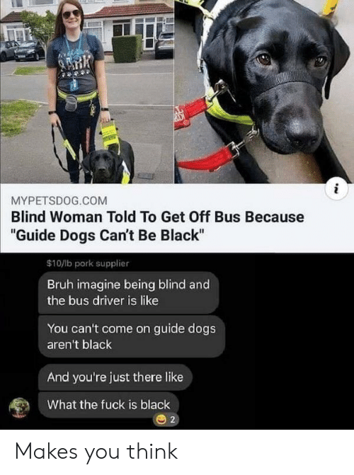 """Bruh, Dogs, and Black: i  MYPETSDOG.COM  Blind Woman Told To Get Off Bus Because  """"Guide Dogs Can't Be Black""""  $10/lb pork supplier  Bruh imagine being blind and  the bus driver is like  You can't come on guide dogs  aren't black  And you're just there like  What the fuck is black  2 Makes you think"""