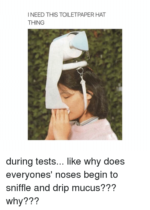 Hats, Thing, and Mucus: I NEED THIS TOILETPAPER HAT  THING during tests... like why does everyones' noses begin to sniffle and drip mucus??? why???