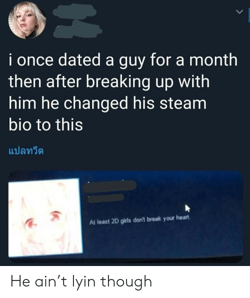 Lyin: i once dated a guy for a month  then after breaking up with  him he changed his steam  bio to this  แปลทวีต  At least 2D girls don't break your heart He ain't lyin though