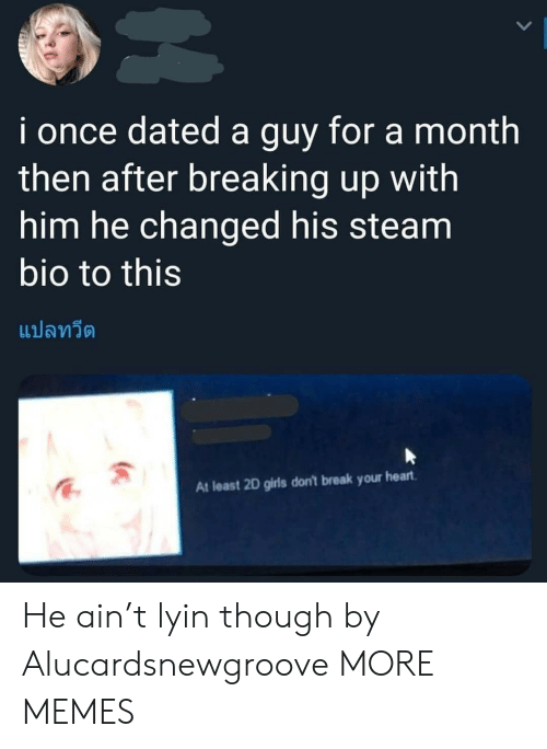 Lyin: i once dated a guy for a month  then after breaking up with  him he changed his steam  bio to this  แปลทวีต  At least 2D girls don't break your heart He ain't lyin though by Alucardsnewgroove MORE MEMES