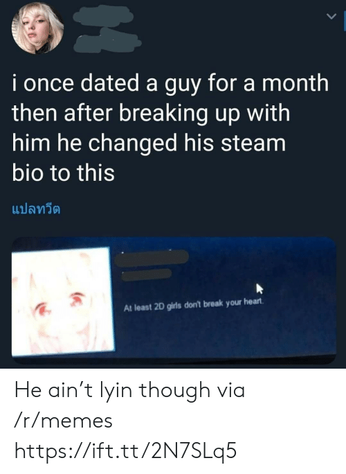 Lyin: i once dated a guy for a month  then after breaking up with  him he changed his steam  bio to this  แปลทวีต  At least 2D girls don't break your heart He ain't lyin though via /r/memes https://ift.tt/2N7SLq5