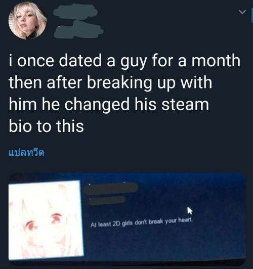 steam: i once dated a guy for a month  then after breaking up with  him he changed his steam  bio to this  แปลทวีต  At least 2D girls don't break your heart