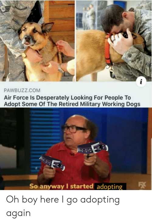 Air Force: i  PAWBUZZ.COM  Air Force Is Desperately Looking For People To  Adopt Some Of The Retired Military Working Dogs  So anyway I started adopting Oh boy here I go adopting again