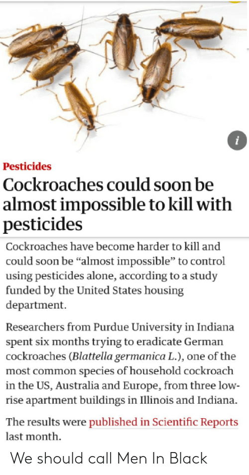 "purdue university: i  Pesticides  Cockroaches could soon be  almost impossible to kill with  pesticides  Cockroaches have become harder to kill and  could soon be ""almost impossible"" to control  using pesticides alone, according to a study  funded by the United States housing  department  Researchers from Purdue University in Indiana  spent six months trying to eradicate German  cockroaches (Blattella germanica L.), one of the  most common species of household cockroach  in the US, Australia and Europe, from three low  rise apartment buildings in Illinois and Indiana.  The results were published in Scientific Reports  last month We should call Men In Black"