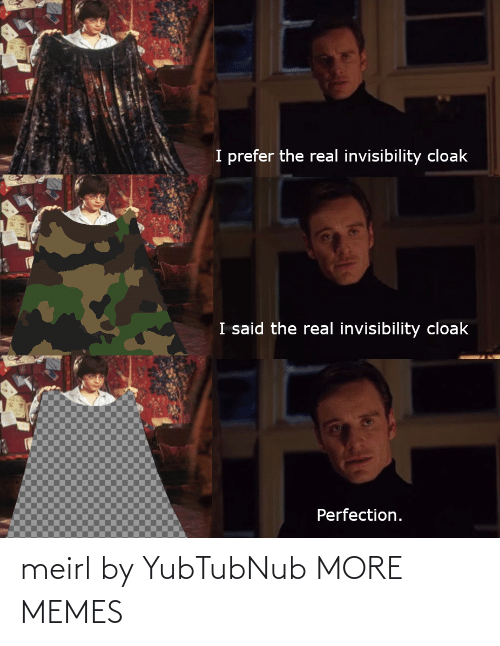 Prefer: I prefer the real invisibility cloak  I said the real invisibility cloak  Perfection. meirl by YubTubNub MORE MEMES