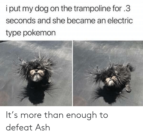 Became: i put my dog on the trampoline for.3  seconds and she became an electric  type pokemon It's more than enough to defeat Ash